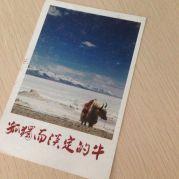 weibo/