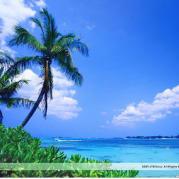 蓝色的加勒比海