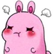 刘琳乖兔子HO