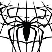 修行的蜘蛛人