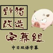 野猪改造字幕组