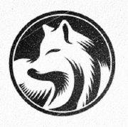 爱上松鼠的狐狸