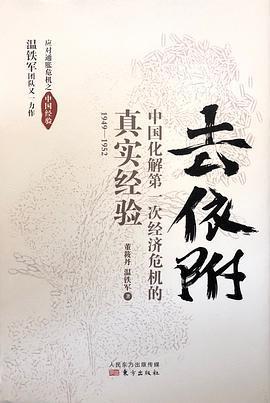 《去依附 : 中国化解第一次经济危机的真实经验》pdf
