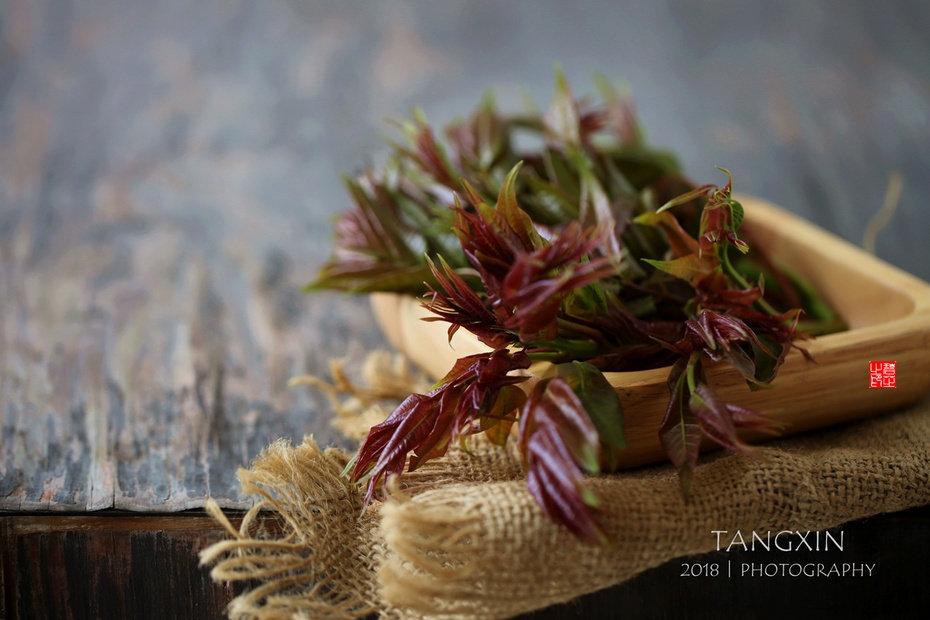"""雨前春芽嫩如丝,十四款香椿的吃法,""""香椿自由""""就这么简单!!"""