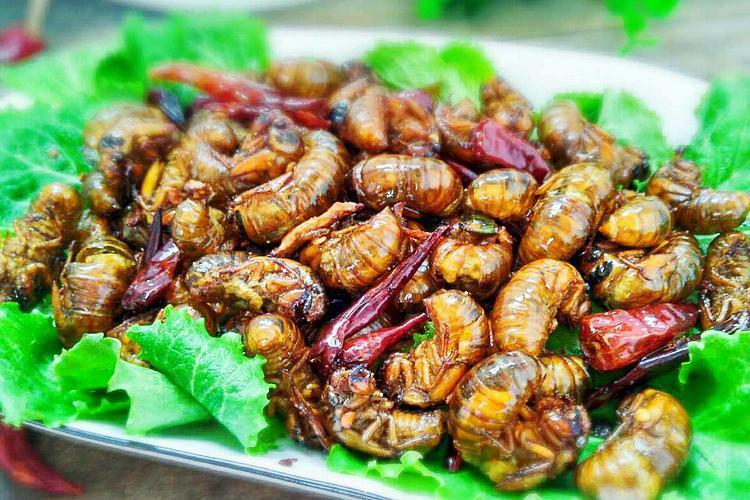 3年才长5克肉,曾是农村的害虫,如今60元一斤成了北方名菜