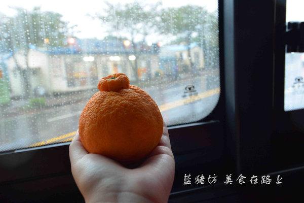 去韩国济州岛吧!桔子深度爱好者的天堂