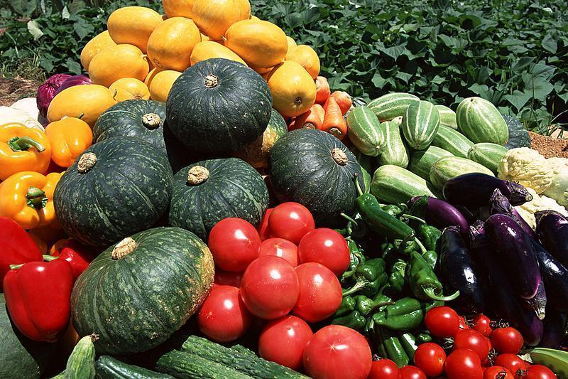 """国内7种""""味儿""""最大的蔬菜,你吃过几种?网友:端走不谢!"""