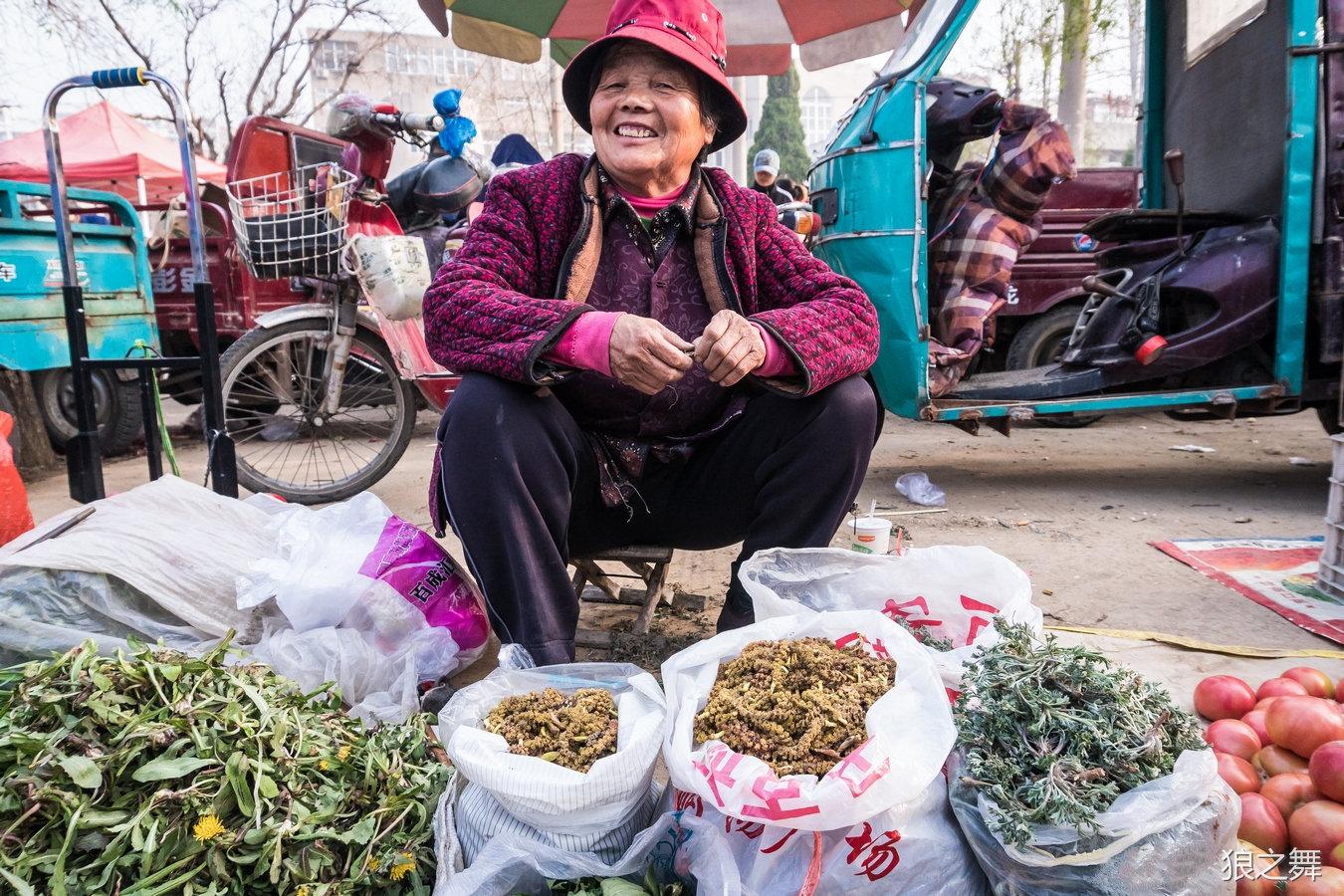 山东大妈地里挖野菜早市上卖 8元一斤城里人争着买