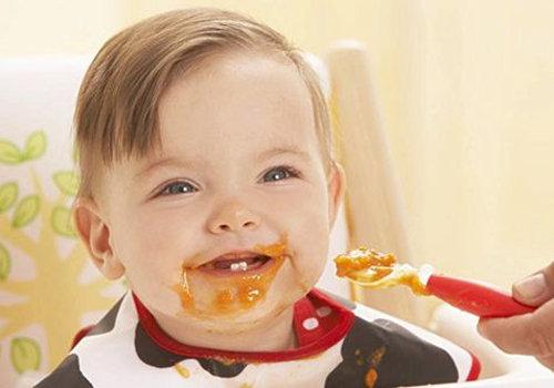 十一个月宝宝辅食食谱大全及做法 营养均衡 健康搭配 方便上手