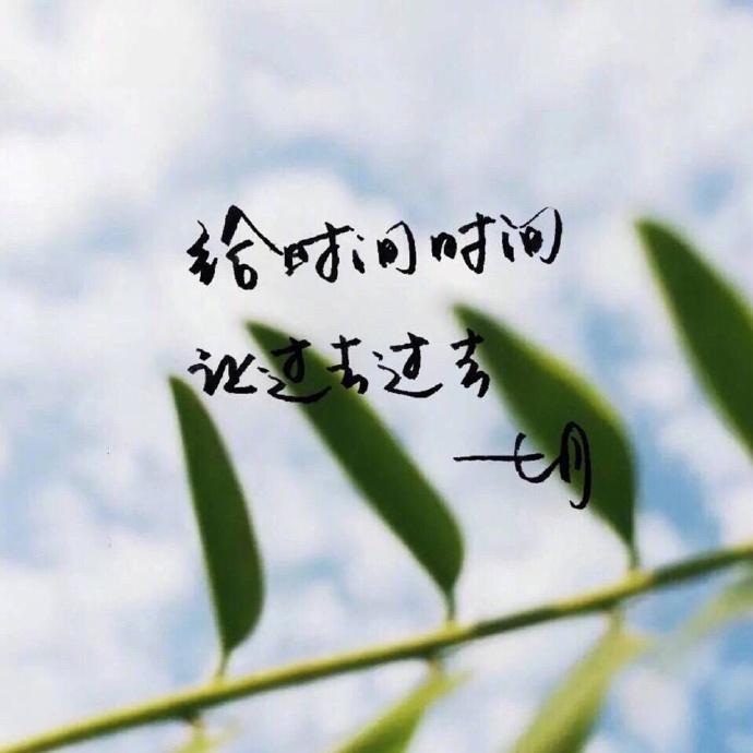 优美语句的文字图片:愿你所有的情深意重,都能换来岁月温柔