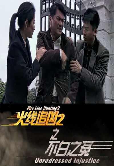 火线追凶2之不白之冤