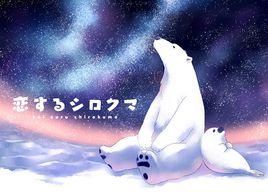 恋爱的白熊