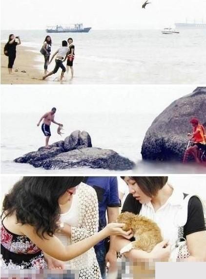 北戴河,20岁男在周围的哄抬声中,把一个小狗抡圆了扔向大海,哪知道小狗非常坚强,一次次游回岸边找主人,人渣就一次次扔,最后一次小狗害怕了,爬到礁石上不敢回来