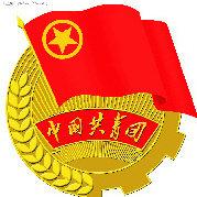 共青团市中区委