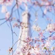 巴黎摄影豆