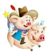 长沙浪漫小猪