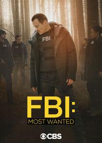 联邦调查局:通缉要犯第三季