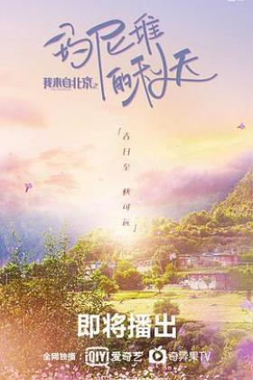 我来自北京之玛尼堆的秋天