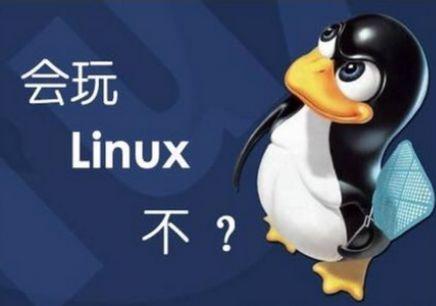 架设网站服务器选择win2008和linux哪个好?