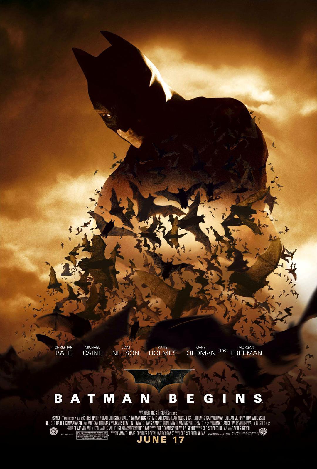 蝙蝠侠:侠影之谜