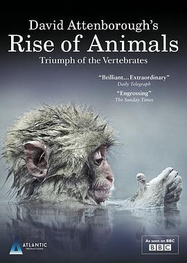 动物的崛起:脊椎动物的胜利