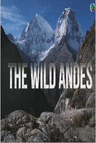 野性安第斯山脉