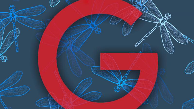 """Google中国版搜索引擎被内部""""毙了""""的照片 - 1"""