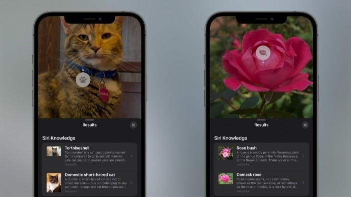 苹果iOS 15正式发布 改进了设备智能和社交功能
