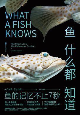 鱼什么都知道PDF下载