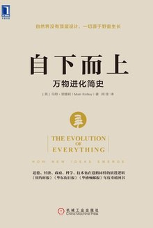 自下而上:万物进化简史