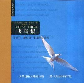 飞鸟集PDF下载