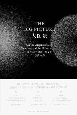 大图景:论生命的起源、意义和宇宙本身PDF下载
