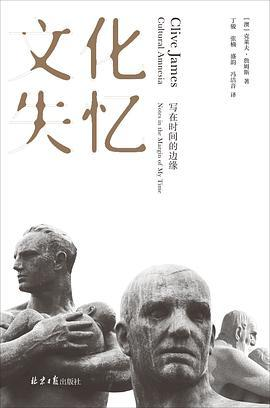 文化失忆PDF下载