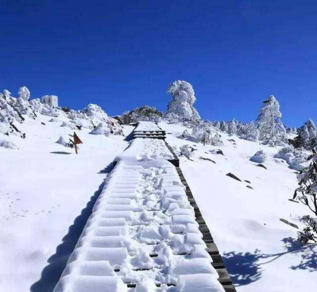 丽江当地旅游团-自助游还是团体游丽江更好吗?