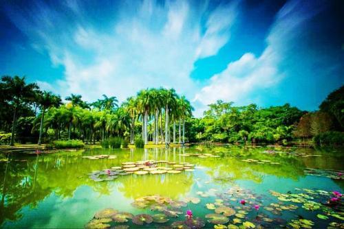 丽江去哪里旅游-到丽江时,哪些旅行指南比较好?