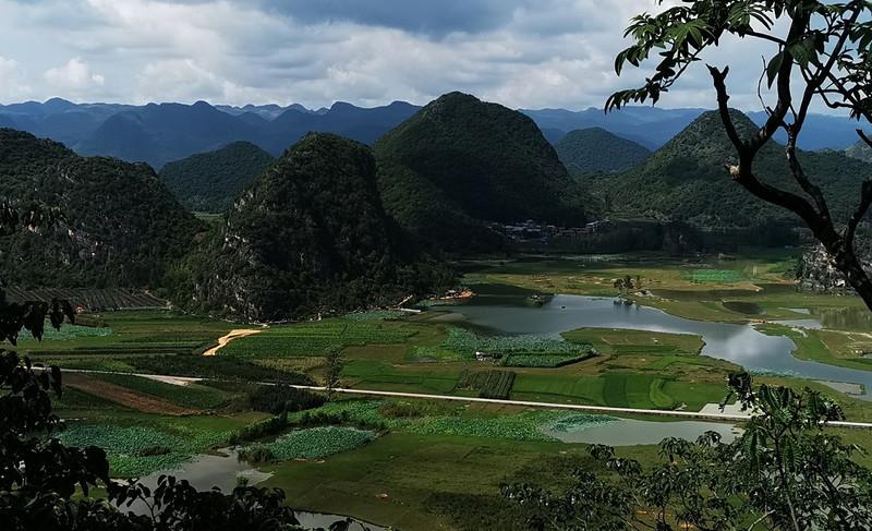 云南有哪些好的旅游特产