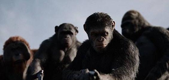 宅男电影猩球崛起3:终极之战的图片 第2张