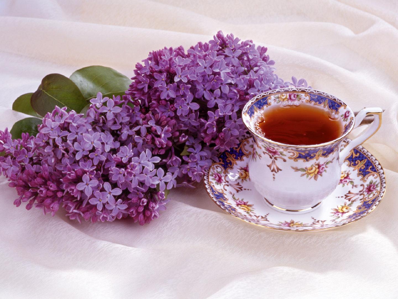 红茶经典代表正山小种茶香四溢精美特写