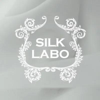 宅男资讯SILK LABO的图片 第4张