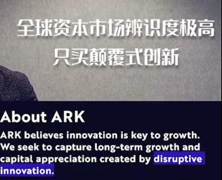 互联网项目ark的图片 第2张