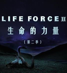 生命的力量第二季