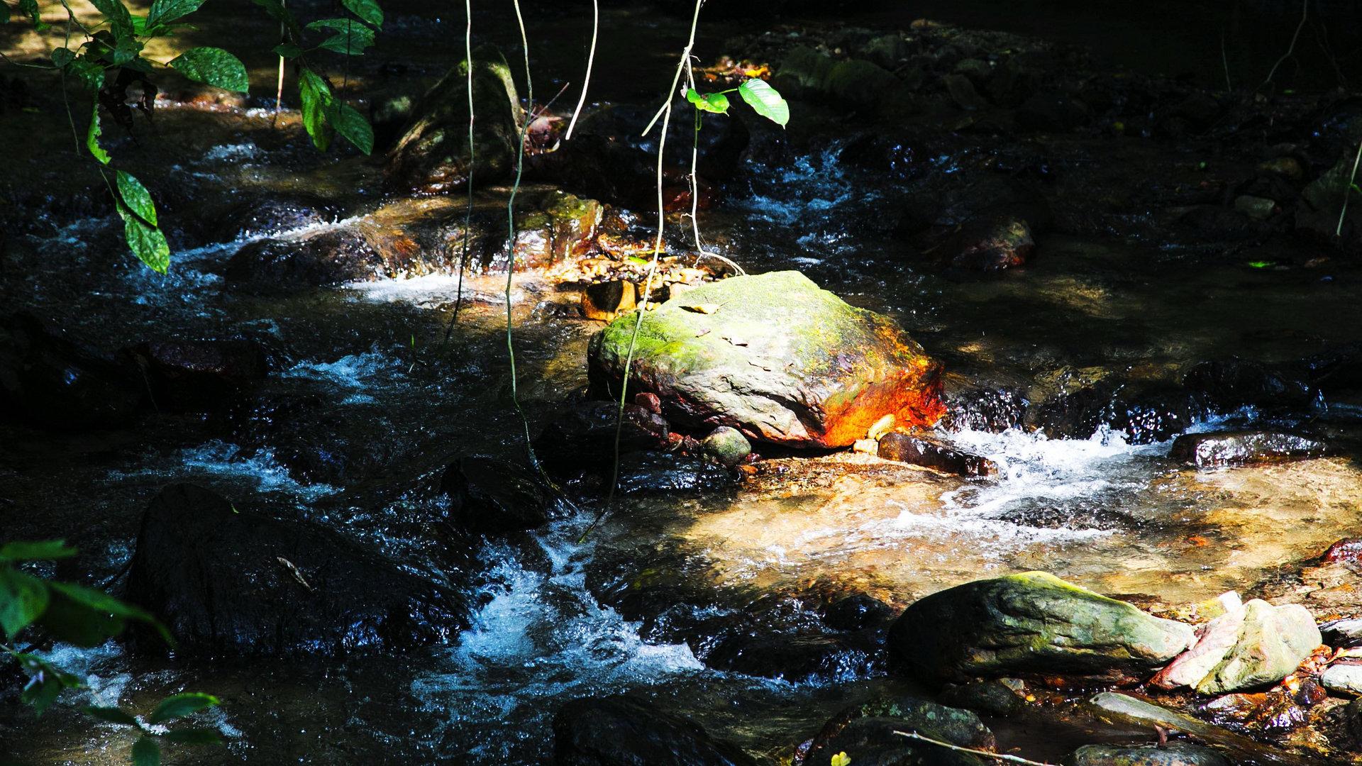 林间溪流4K超高清壁纸图片