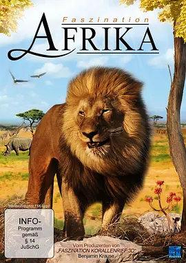 迷人的非洲