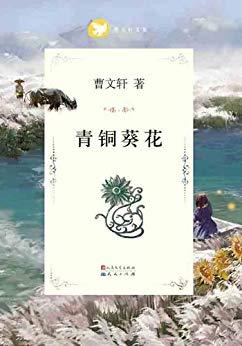 青铜葵花PDF下载