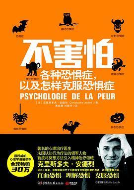 不害怕:各种恐惧症,以及怎样克服恐惧症PDF下载