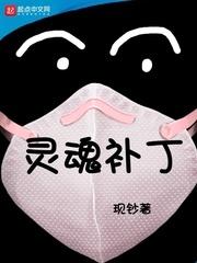 灵魂补丁TXT全集下载