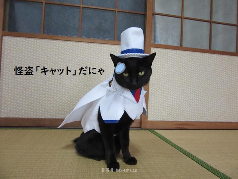日本黑猫动画角色COS_和邪社05