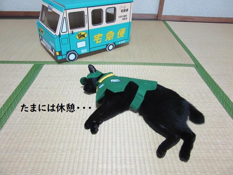 日本黑猫动画角色COS_和邪社08