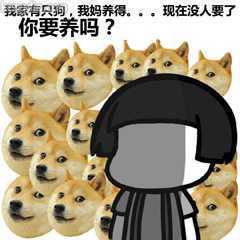 Doge暴漫表情:你家养狗吗