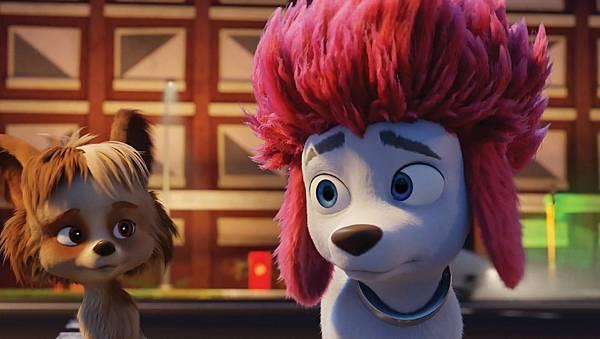 电影《100%小狼人》不走寻常复仇路线给你更多想象空间 (2)